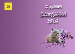 otkry-tka-2